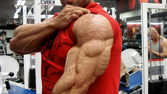 bodybuilding and steroids essay Anabolic steroids are designed to mimic the bodybuilding traits of testosterone most healthy males produce less than 10 milligrams of testosterone a day.